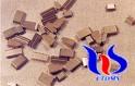 tungsten carbide blank tips